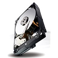 Seagate Constellation ES.3 1000GB